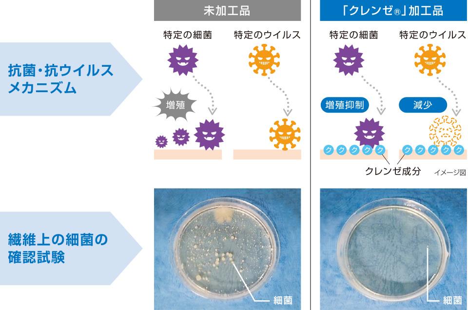 抗菌・抗ウイルス